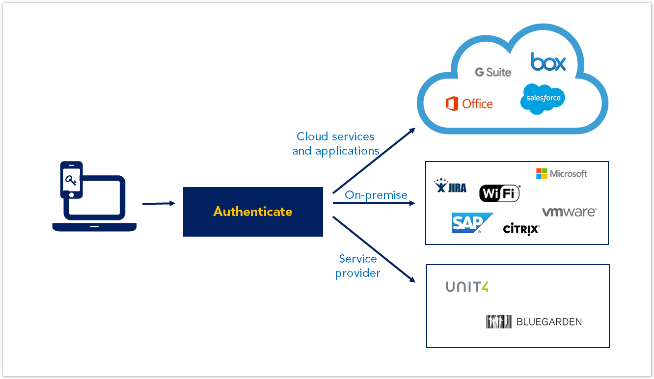 Overview of Hybrid Access Gateway